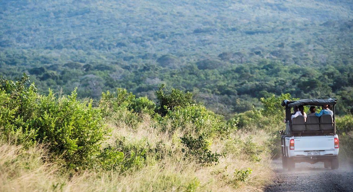 Voyage en afrique : Tout savoir sur les meilleures destinations en terme d'aventure sauvage