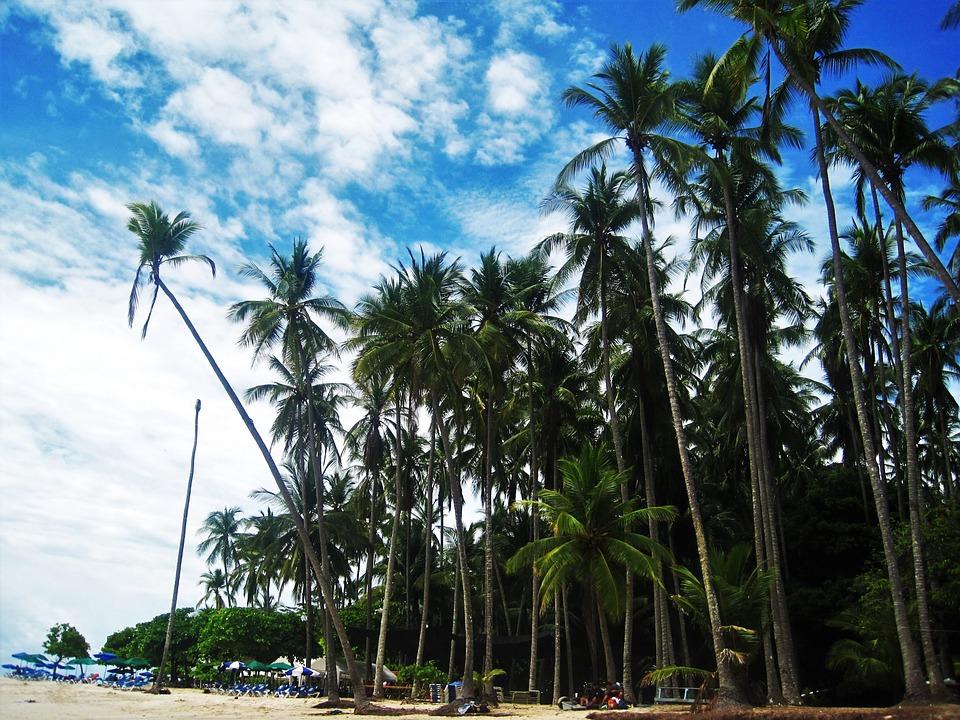 Circuit au Costa Rica : partir à la conquête d'un pays paradisiaque