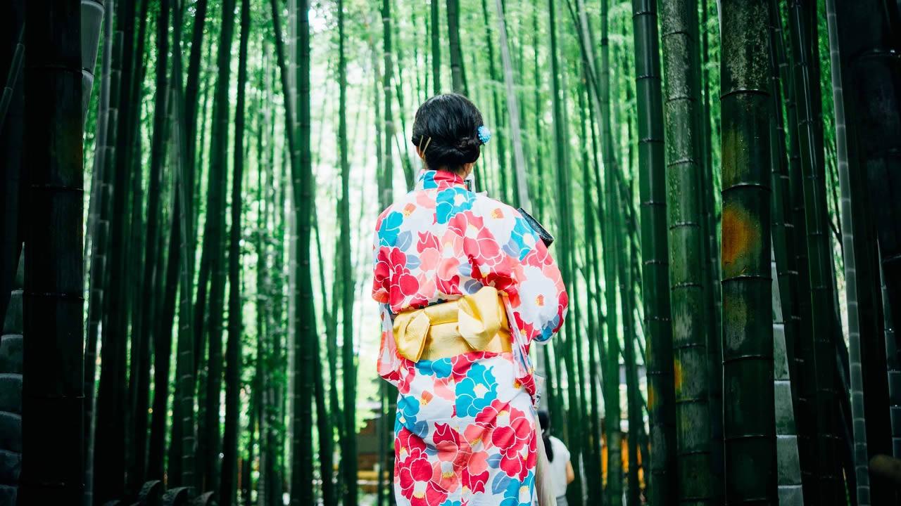 Voyage culturel au Japon: à la découverte des fêtes, rites, coutumes
